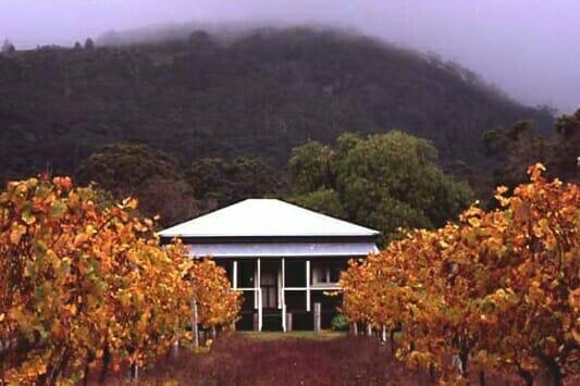Abbey Creek Vineyard