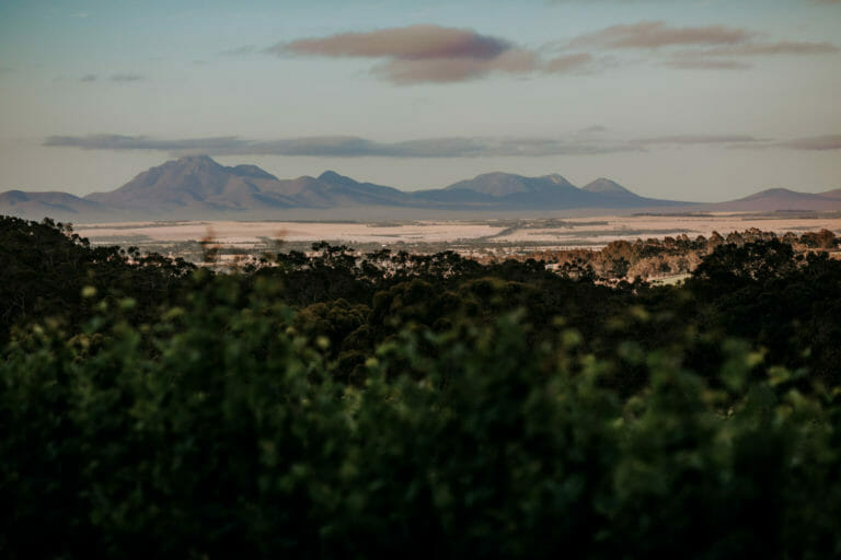 View of the Stirling Ranges from Castle Rock Estate